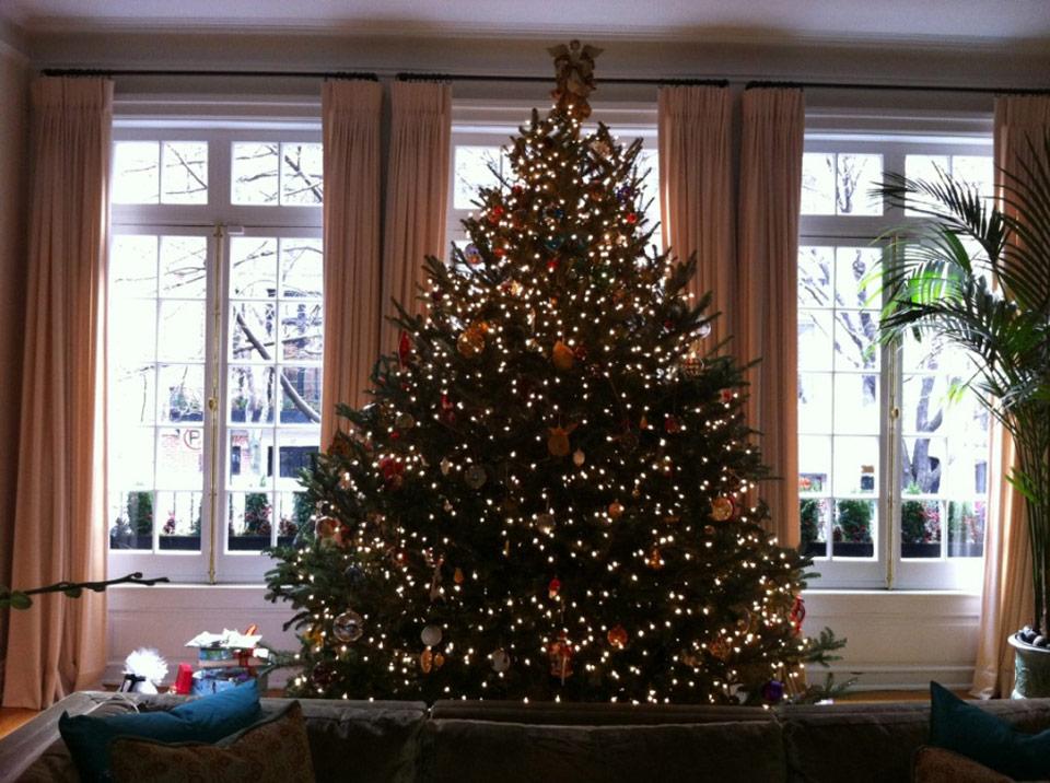 christmas_tree_davis