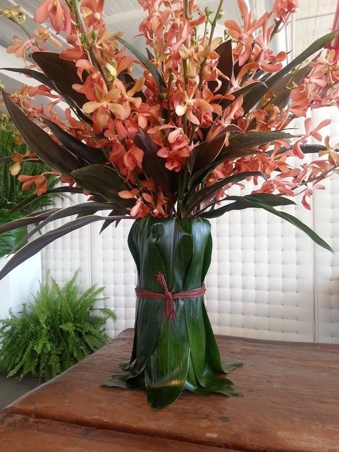 tall brown orchid